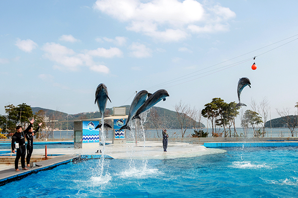 거제씨월드 GEOJE SEA WORLD
